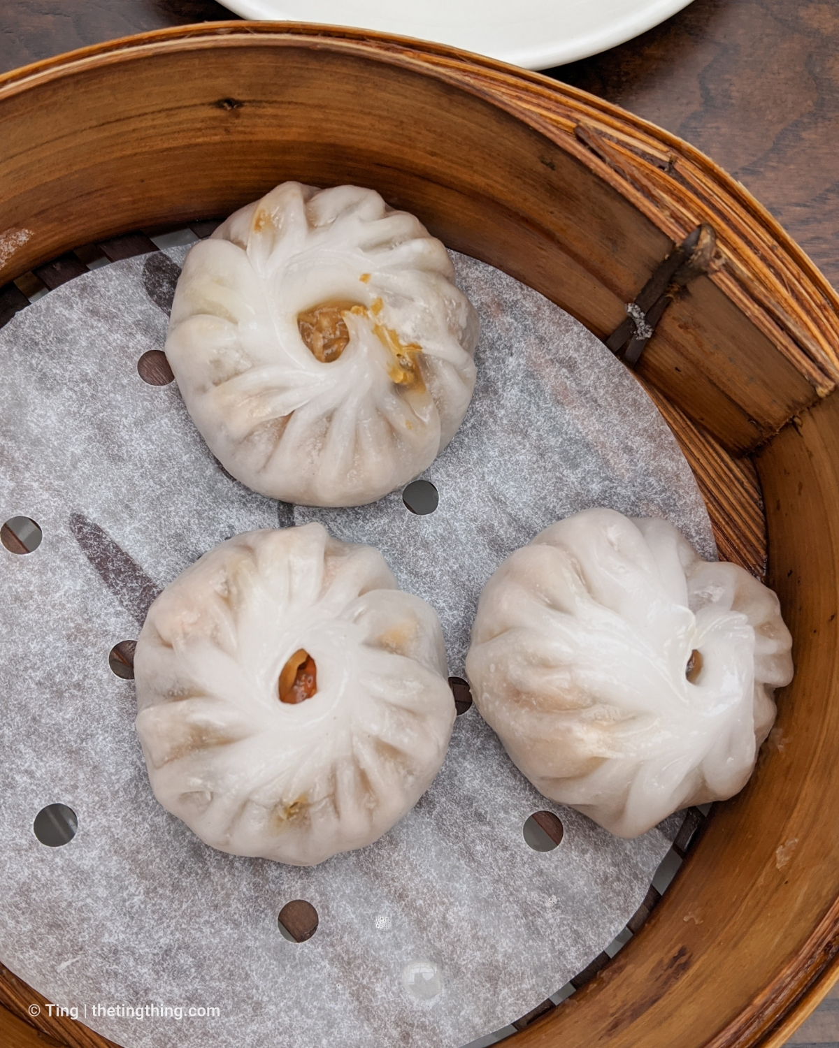 Chung Ying steamed vegan dumplings